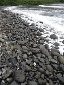 Black Sand/Rock Beach